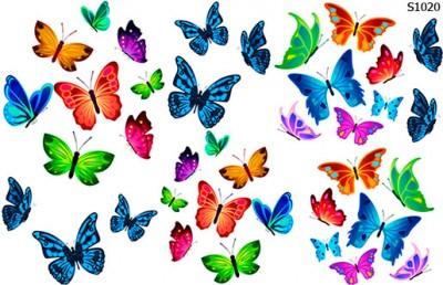 Слайдер дизайн бабочки разноцветные S1020