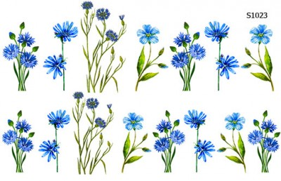Слайдер дизайн василек голубой S1023