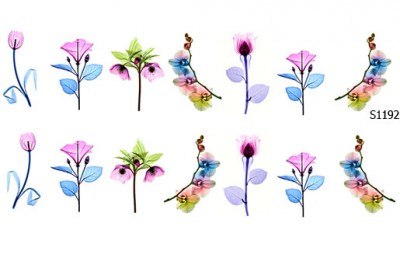 Слайдер дизайн орхидея роза тюльпан S1192