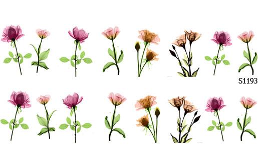Слайдер дизайн тюльпаны розы S1193