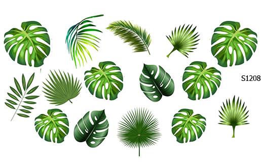 Слайдер дизайн джунгли листья S1208