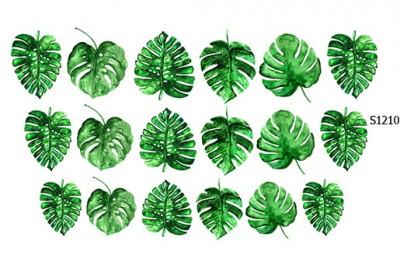 Слайдер дизайн листья тропики S1210