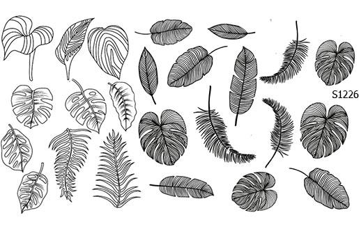 Слайдер дизайн листья тропические S1226