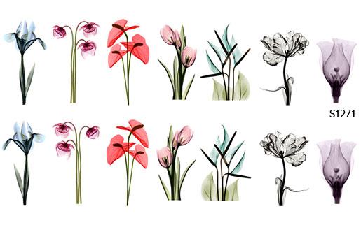 Слайдер дизайн наклейки цветы S1271