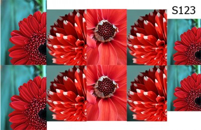 Слайд-дизайн цветы микс S123