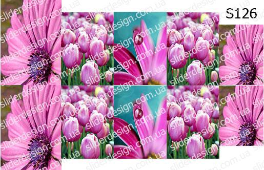 Слайд-дизайн цветы микс S126