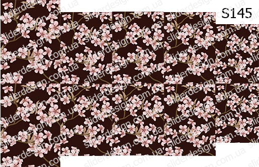 Слайд-дизайн цветы обои S146