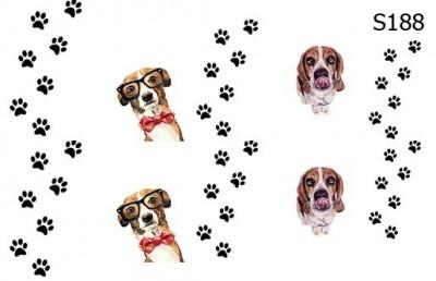 Слайд-дизайн собаки+следы S188