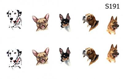 Слайд-дизайн собаки микс S191