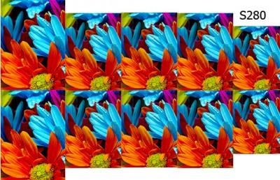 Слайдер дизайн яркие цветы S280