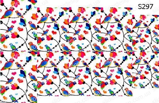 Слайдер дизайн попугаи S297