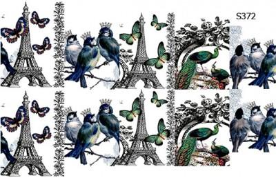 Слайдер дизайн Париж и птички S372