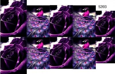 Слайдер дизайн павлин и роза фиолетовый S393