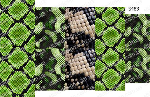 Слайдер дизайн текстура змеи S483