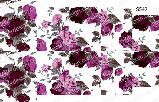 Слайдер дизайн цветы фиолетовый S542