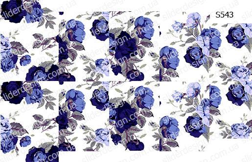 Слайдер дизайн цветы синий S543