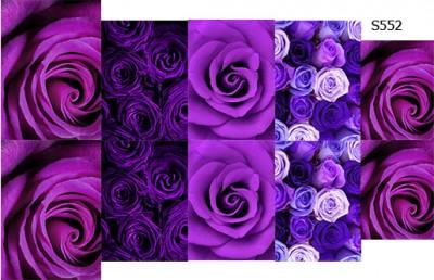 Слайдер дизайн пурпурные розы S552