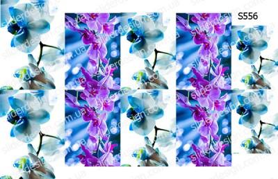 Слайдер дизайн орхидея S556