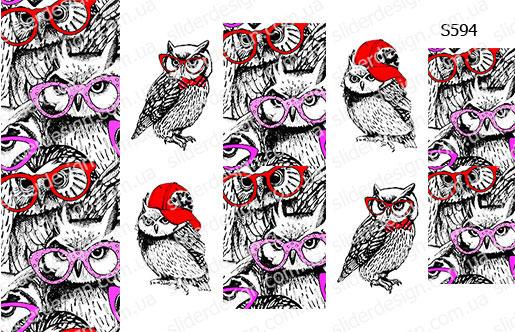 Слайдер дизайн совы в очках S594