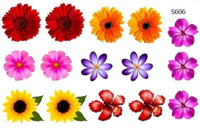 Слайдер дизайн набор цветов S606