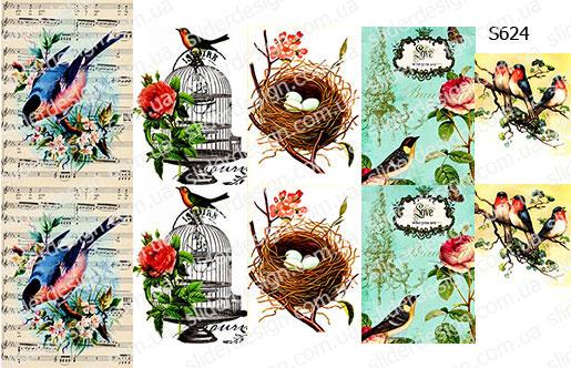 Слайдер дизайн весенние птички S624
