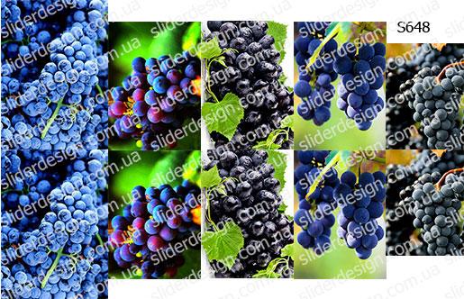 Слайдер дизайн виноград S648