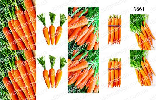 Слайдер дизайн морковка S661