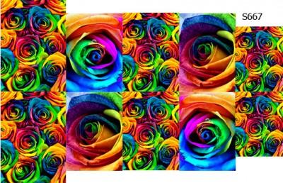 Слайдер дизайн розы радуга S667