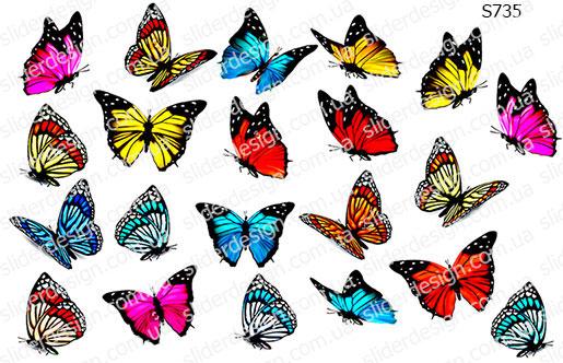 Слайдер дизайн бабочки сет S735