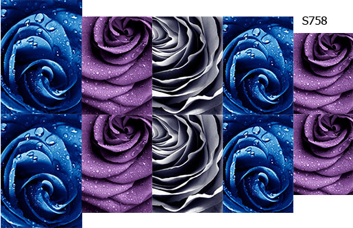 Слайдер дизайн лепестки розы макро S757