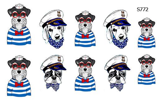 Слайдер дизайн капитан корабля собачки S772