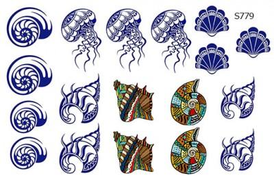 Слайдер дизайн морские ракушки S779