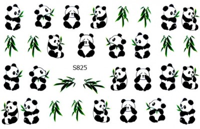Слайдер дизайн панды и эвкалипт S825