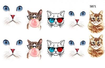 Слайдер дизайн коты S871