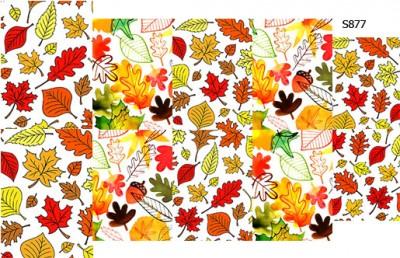 Слайдер дизайн осенние листья S877